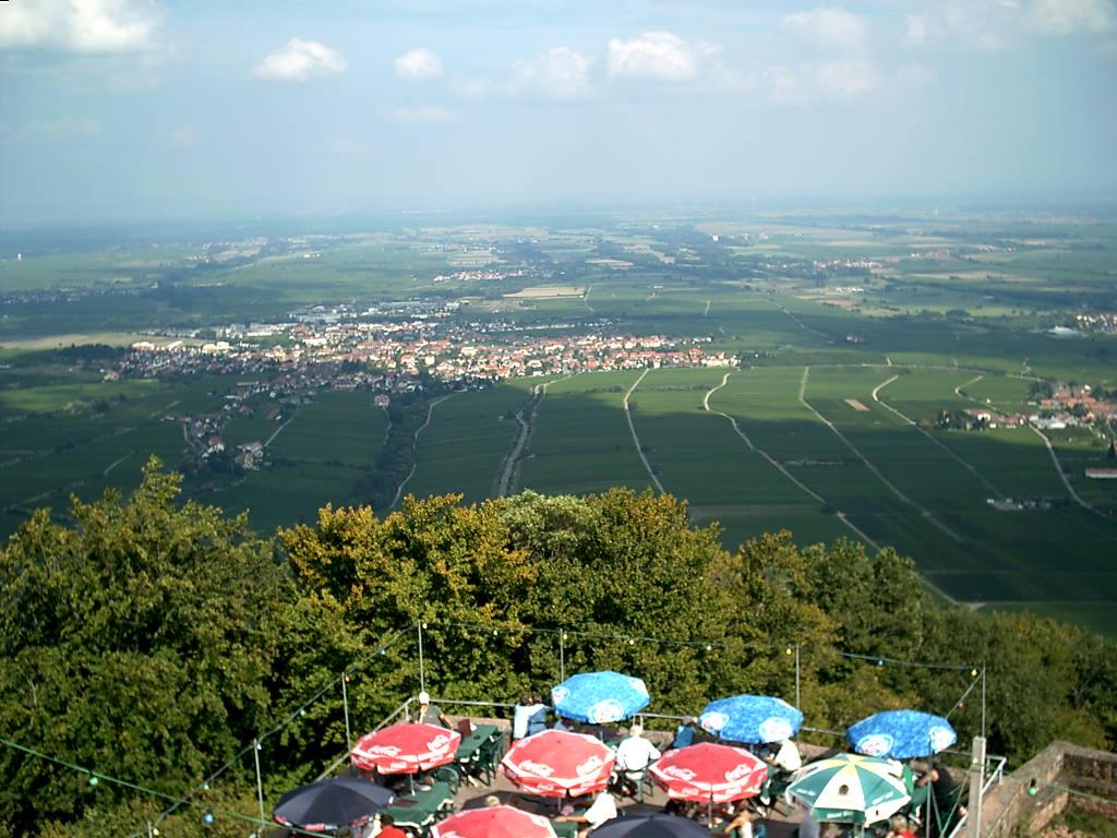 Blick von der Rietburg